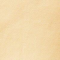 Domus-12-cream brulle