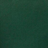 Domus-25-green